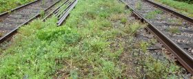 Rail line trails - your action needed